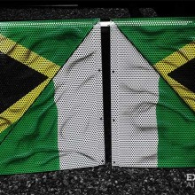 'Nigeria & Jamaica In The House' Speaker covers designed and airbrushed by Ian Johnson for a Vancouver based DJ